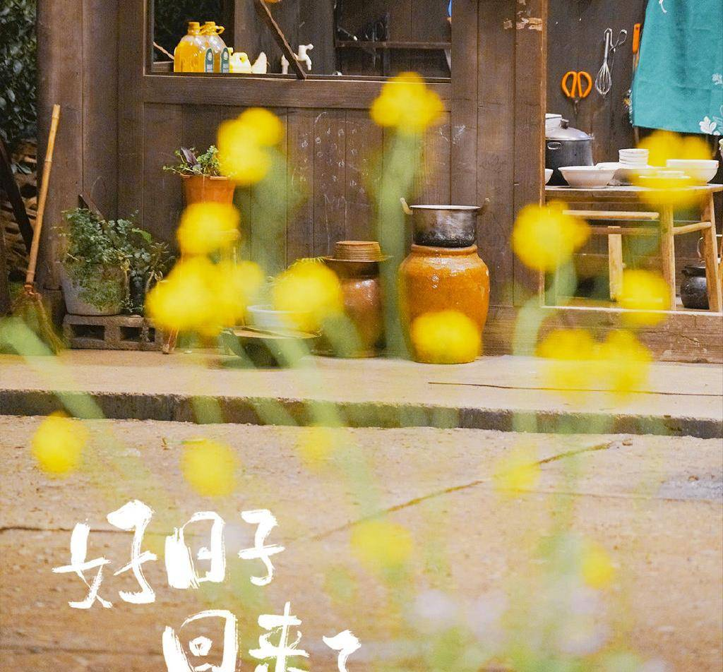 杨紫张艺兴情侣睡衣风波,《向往的生活》需反省,别炒作