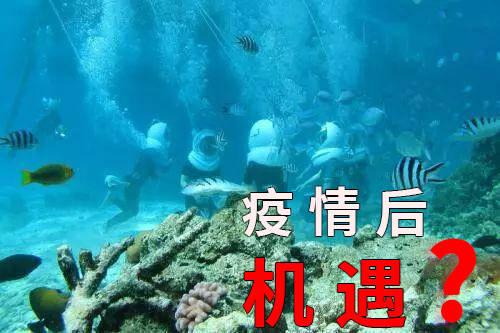 """疫情过后,国内潜水行业潜水呼吸器龙头企业""""我来创""""率先发起招商"""