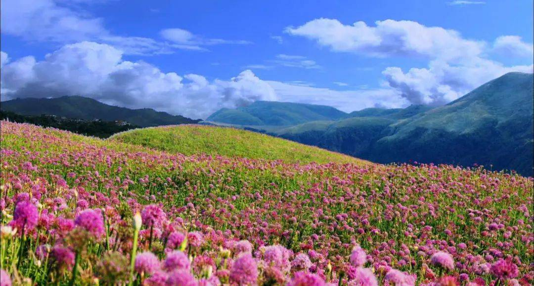 8个国内五月最美的地方,别辜负了这么美的初夏!