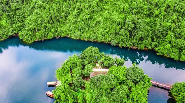 """珠三角里的绿洲,有人称之为""""活的自然博物馆"""",超适合周末游!"""