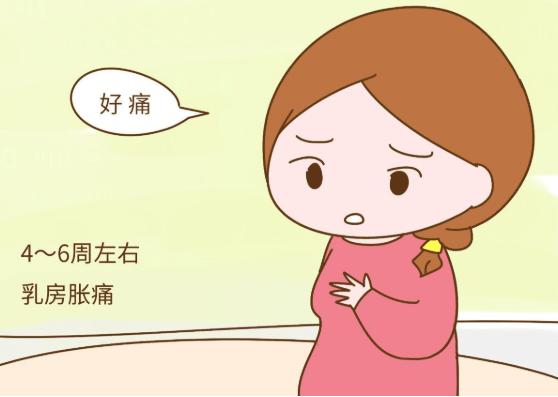 关于早孕反应,你知道多少?