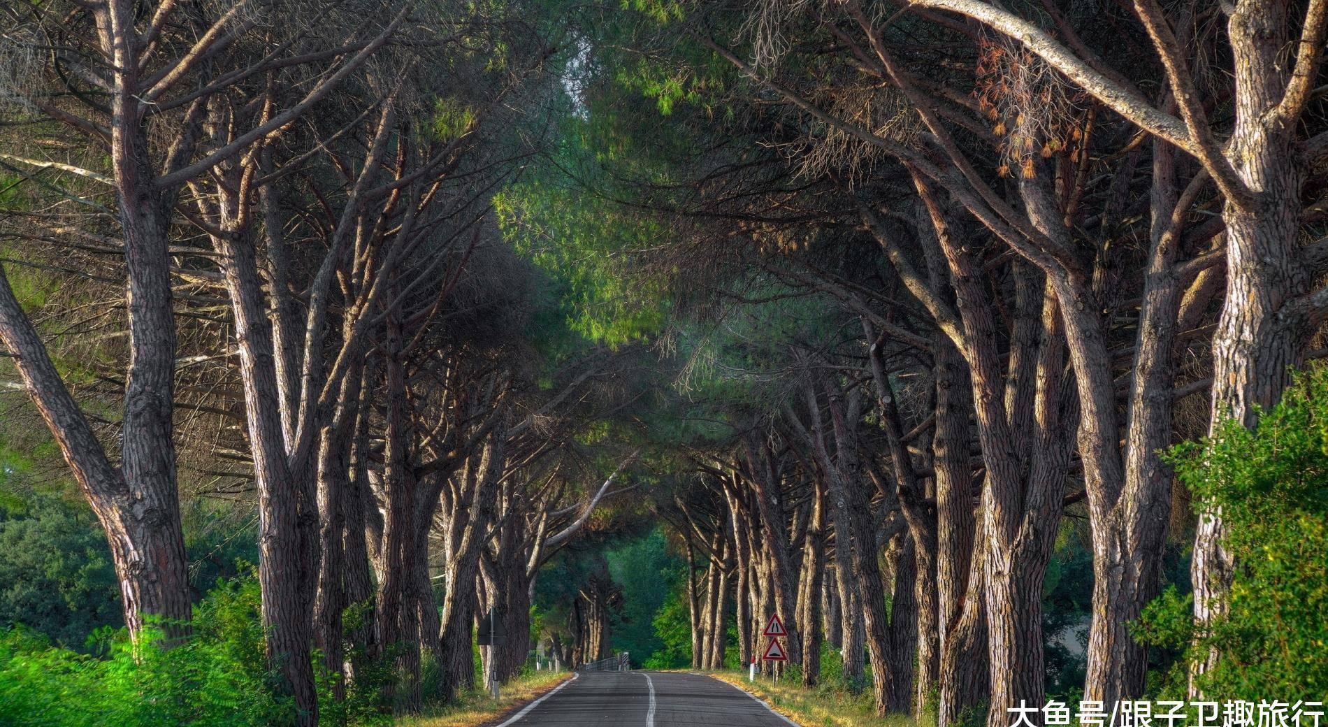 """陕西最诡异的路名,村民称其为""""黄泉路"""",听着都觉得阴森森的"""