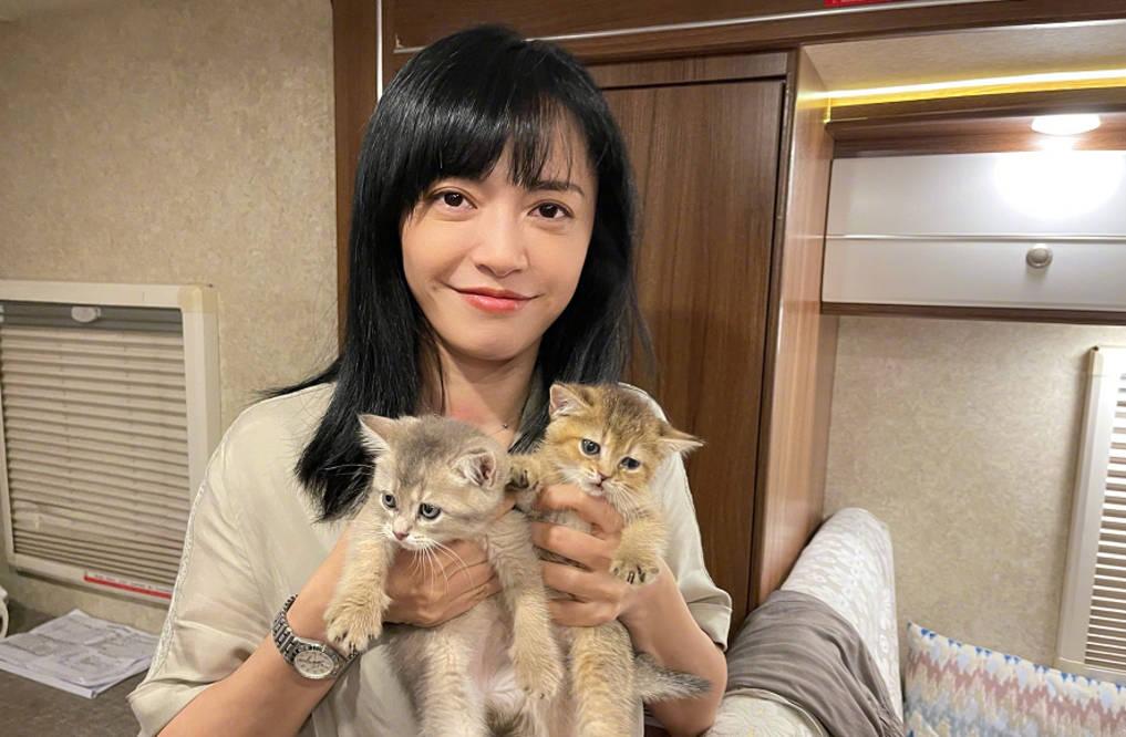 图片[1]-姚晨谈中年女演员现状,与王媛可对比,只是火与不火的差别而已-番号都