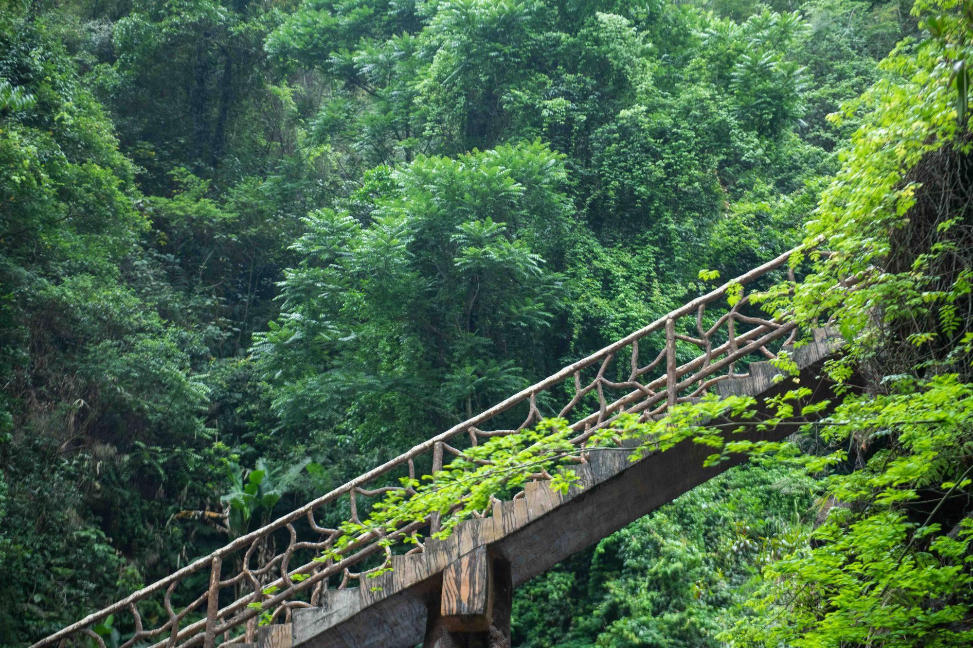何必去黄果树!广东有超美岭南第一瀑,藏在山谷幽深处,景美人少