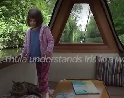 原创             被医生判定一辈子不会说话的自闭症女孩,竟然是一只猫让她开了口