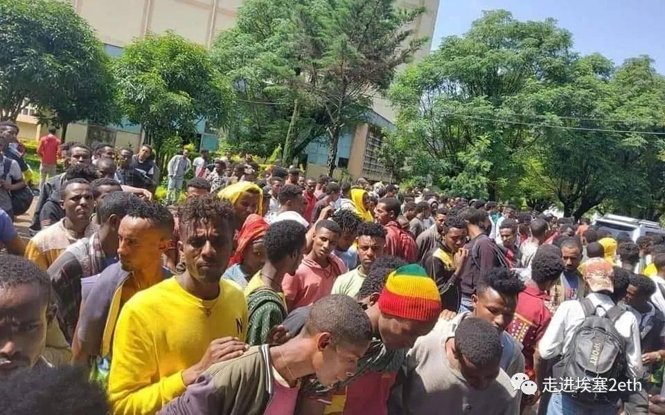 """埃塞俄比亚继续""""爆兵""""模式……"""