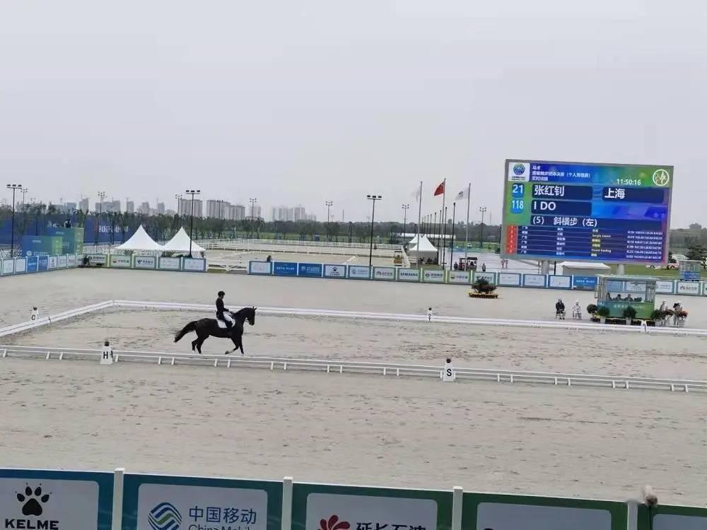 十四运马术盛装舞步雨中开跑,最年轻的上海队登上领奖台