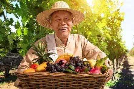 秋分至,秋意浓,丰收时节,果蔬秋浓,食色共赏!
