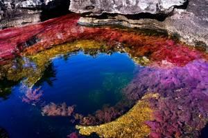 素顏才能參觀的五色河,禁止化妝噴香水,每天只接待200名遊客