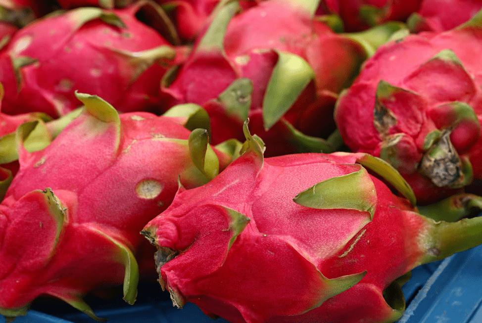 火龙果的红心和白心只是颜色不同?其实区别很大,以后就别乱买了
