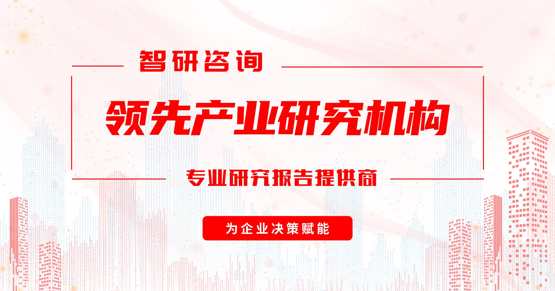 2021-2027年中国美食街市场深度研究与发展前景报告_分析