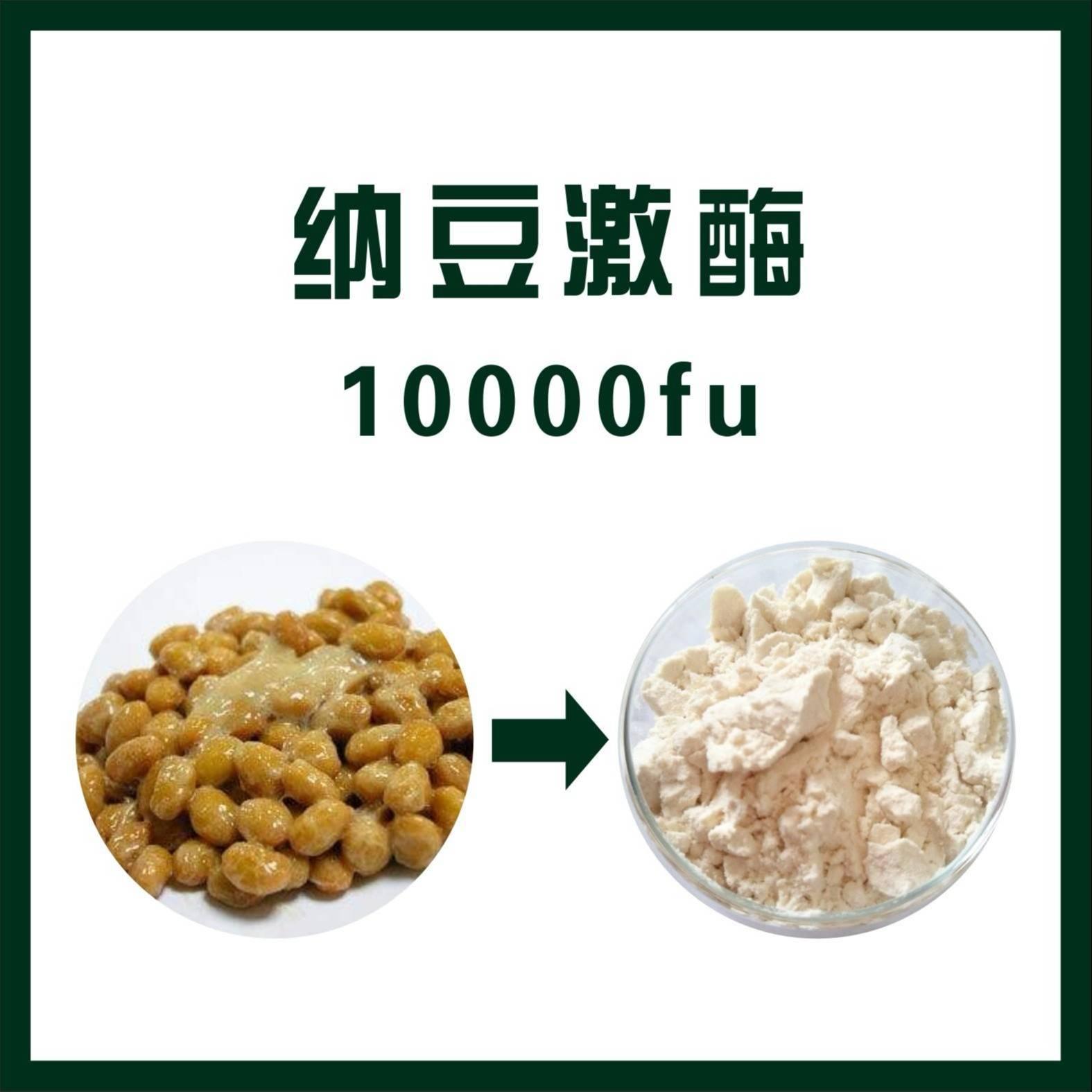 你了解納豆激酶嗎?