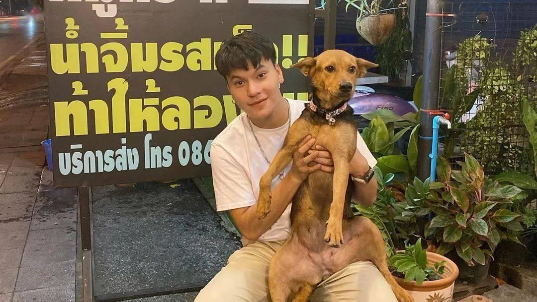 泰国靓仔断片醒来,发现自己睡了一只陌生狗…