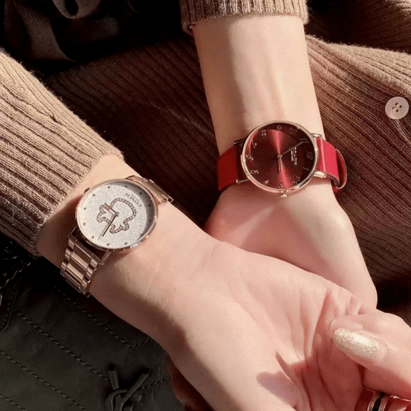 戴手表的人,很加分!「蔻驰小红表」299元限时抢购