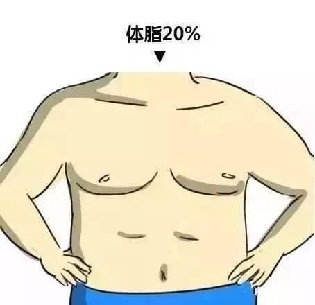 男女体型对比图 看看你在哪个范围?