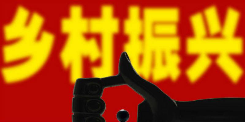 """国家乡村振兴局""""亮相"""""""