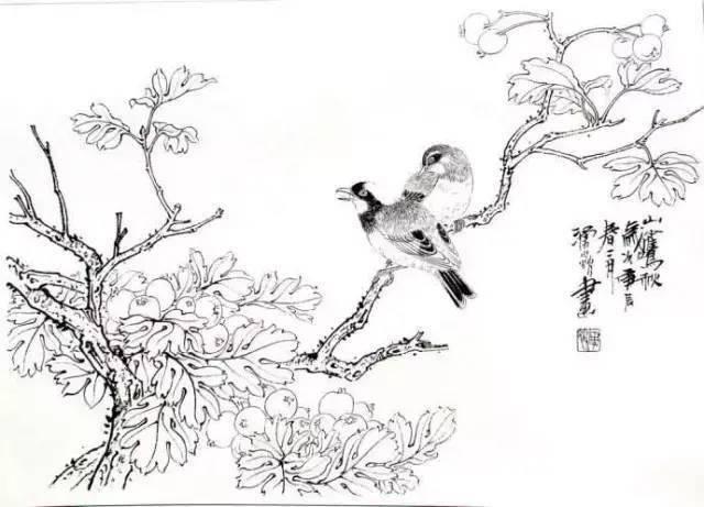 【书画本领】国七胜娱乐官网画花鸟根本画法