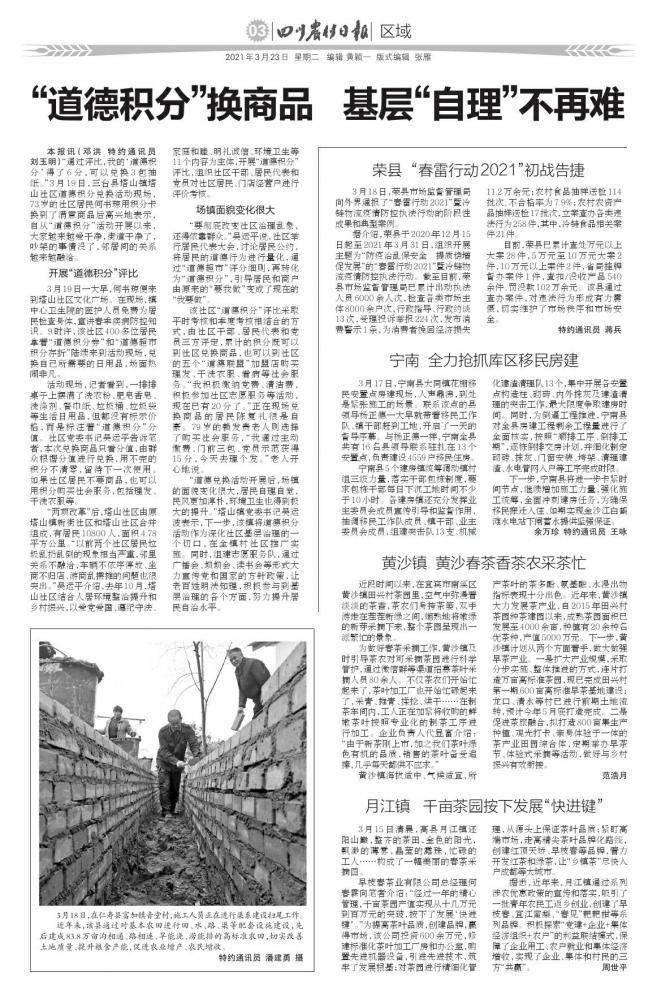 """月江镇 千亩茶园按下发展""""快进键"""""""