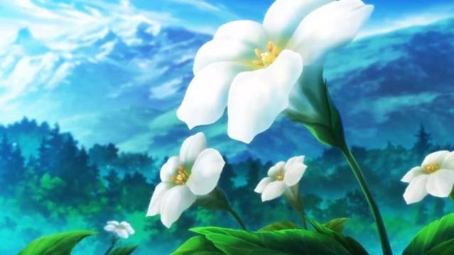 TV动画《自称贤者弟子的贤者》第1弹PV公开  将于2021年播出