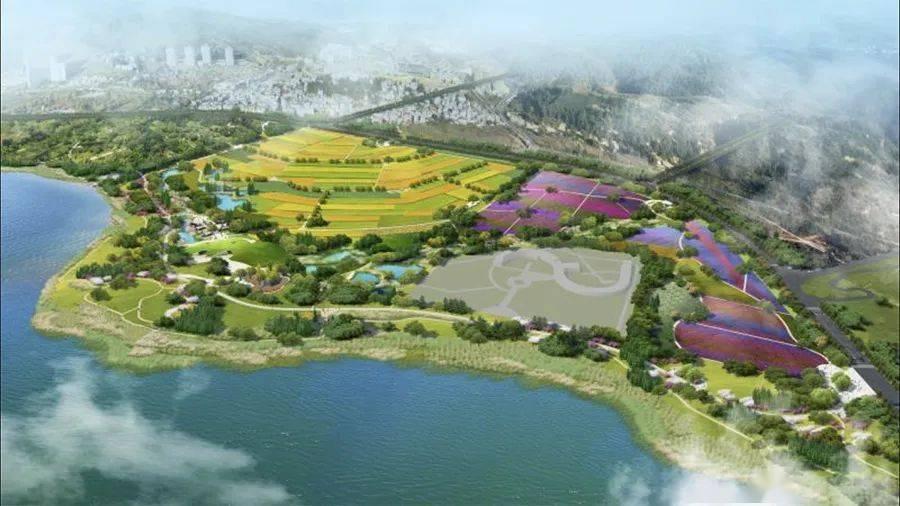 全长16.8公里、六大主题景观!抚仙湖生态廊道来了