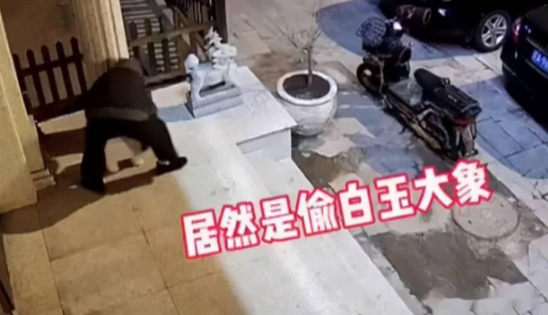 大街上,竟然有人明目张胆偷!大!象