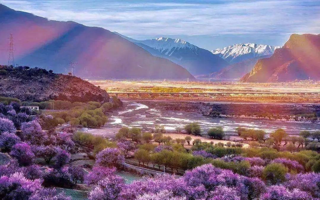 【景观世界】最美人间四月天
