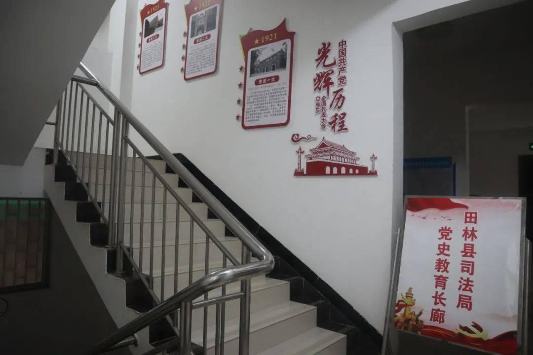 田林县司法局多形式开展党史学习教育 亮点纷呈