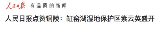 人民日报点赞铜陵:缸窑湖湿地保护区紫云英盛开