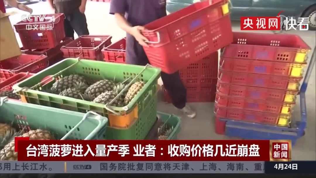 产季到了,台湾菠萝收购价腰斩,几近崩盘!