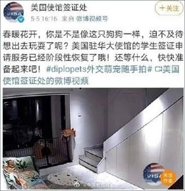 将中国学生比作狗?美国驻华大使馆道歉
