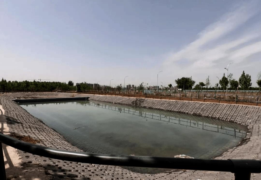 门票免费送!邢台30多万平的大型生态乐园正式开放!