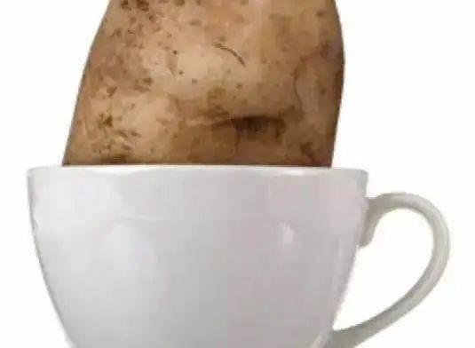 精品咖啡喝出土豆的味道,这是为啥?