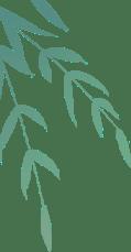 【我们的节日】浓情端午 传承文化——菏泽市妇联实验幼儿园端午节系列主题活动