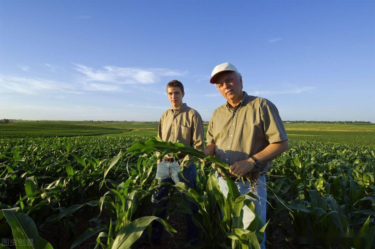 农民耕种的细节描写 农民种地细节描写