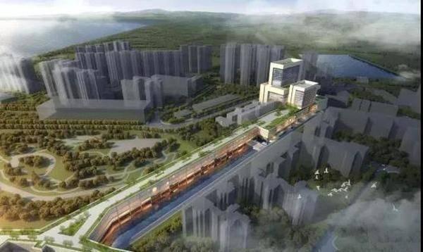 江门市有多少人口_城建再发力 打造 长安街 全国品牌中学落户 高新 一小 要建