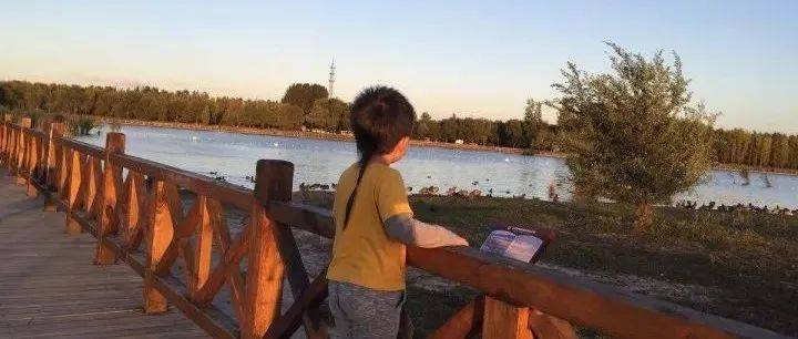"""延庆有个""""最美""""的景观地 ,可以看鸟儿诗意的栖息!"""