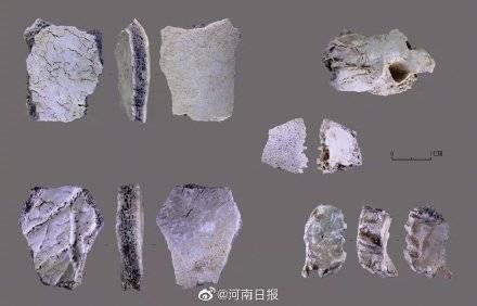 河南发现3万年前现代人头骨,网友:仙人洞里住仙人!