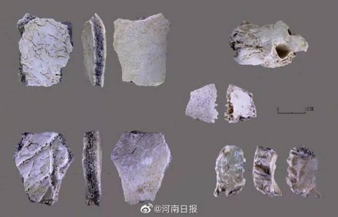 重大发现!河南发现3万年前现代人头骨,网友评论亮了