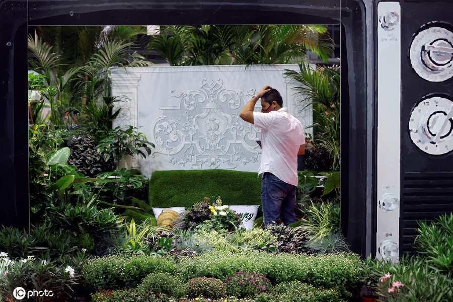 西班牙举行伊比利亚植物节